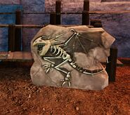 SOD-RiseOfStormheart-NadderSkeleton