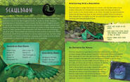 Scauldron guide 3