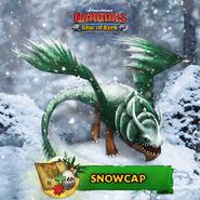 ROB-Snowcap Ad