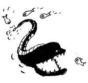Gallery htbap eel