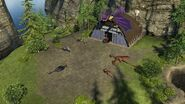 Beserker dragon stable