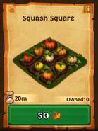 ROB-Squash Square