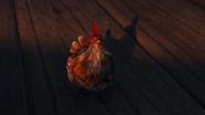 THONTH-Chicken 2