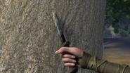 NoDragonLeftBehind-Pine3