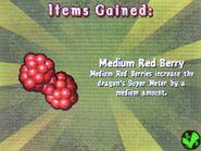 HTTYDgame-MedRedBerries
