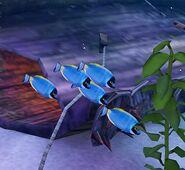 SOD-ShipGraveyard-BlueFish1