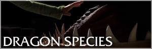 DragonSpeciesPortal