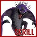 SkrillPortal
