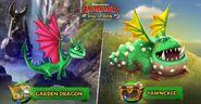 ROB-Garden Dragon Yawnckle Ad