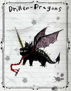Driller Dragon Books