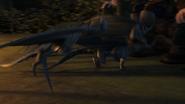 Baby Razorwhip 39