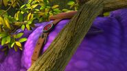 CC - A closeup of Burple and the saddle on his back