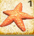Starfish HTTYD