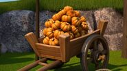 A wagonful of pumpkins