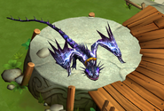 Dagur's Skrill Juvenile