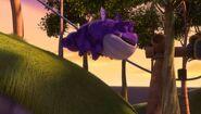 SH - Burple sleeping flying