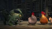 SFO...AC-Chickens3