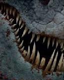 Red death teeth
