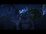 Toothless(35)