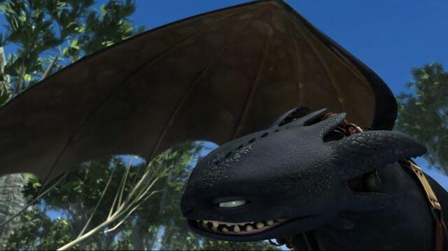 File:Toothless(85).jpg