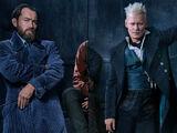 Digits!Duel between Albus Dumbledore and Gellert Grindelwald