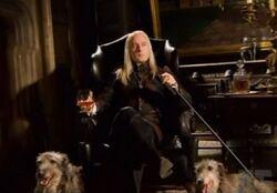 Lucius Picture