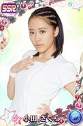 Oda SakuraSSR15