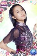 Oda SakuraSSR12