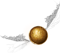 Goldener Schnatz Pottermore