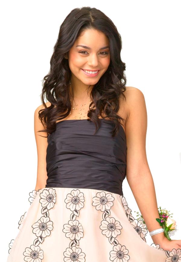 Amazing High School Musical 3 Gabriella Prom Dress Embellishment ...