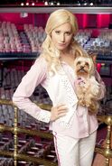 Sharpay s fabulous adventure 6