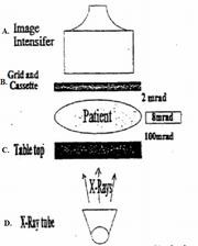 Fluoropartsid