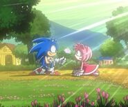 Sonic was holding a rose