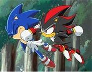 Shadow and Sonic fighting