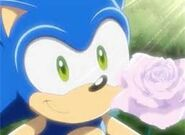 Sonic was holding a pink rose