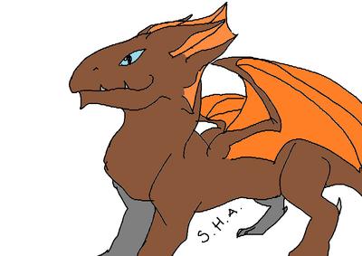 OC-WebHead-dragon34611