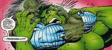 2246001-596783 maestro hulk3
