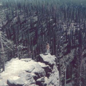 Yellowstone tourist stands on a precipice.