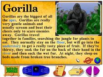 Buzzy's Information about the Jungle Gorilla