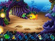 Jawfish Cave
