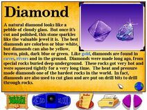 Buzzy's Information about the Jungle Diamonds