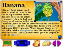 Buzzy's Information about the Jungle Bananas