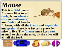 Buzzy's information about the farm mice