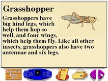 Buzzy's information about the farm grasshoppers