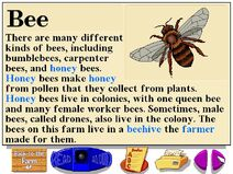 Buzzy's information about the farm bees