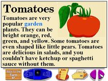 Buzzy's Information about Farm Tomatoes