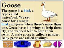 Buzzy's information about the farm goose