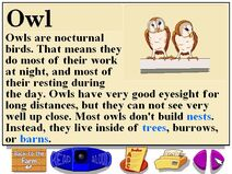 Buzzy's information about the barn owls