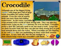 Buzzy's Information about the Jungle Crocodile