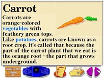 Buzzy's information about the farm carrots